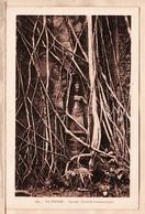 As051 Vietnam TA PROHM TEVODA DIVINITE BRAHMANIQUE 1930s Edition Albert PORTAIL 605  INDOCHINE VIET NAM - Vietnam