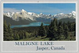 Jasper - Parc National De Jasper - Lac Maligne - Les Bad Hills - Jasper