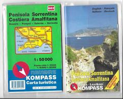 Carte Géographique-routière Penisola Sorrentina Costiera Amalfitana 1:50000ème -1981 - Carte Geographique