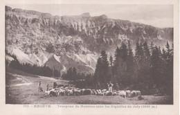 575 - Megève - Troupeau De Moutons Sous Les Aiguilles Du Joly ( 2490 M ) - Megève