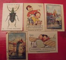 5 Images Bon-point Chocolat COOP. Pour Album . Béatrice Mallet. Lot 125. Vers 1960. - Otros