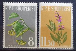 """Albanien 1962, Mi 655-56 """"Blumen"""" MNH Postfrisch - Albanie"""
