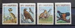 """Albanien 1963, Mi 741-44  """"Vögel"""" MNH Postfrisch - Albanie"""
