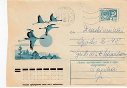 LITHUANIA Birds Cranes Cover From Siauliai To Druskininkai 1977 #25716 - Lituanie