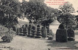 Vitré (35) - Château Du Bois - Bide, Jeux D'échecs Végétal. - Vitre