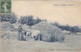(8)   TENCE - La Fenaison - Zonder Classificatie