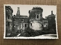 SARZEAU PENVINS Chateau De Suscinio - Sarzeau