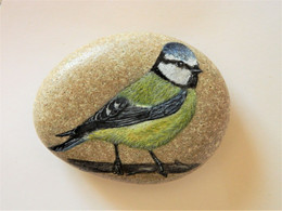 Blue Tit Bird Hand Painted On A Beach Stone Paperweight Decoration - Fermacarte