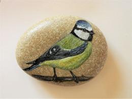 Blue Tit Bird Hand Painted On A Beach Stone Paperweight Decoration - Briefbeschwerer