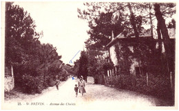 44 SAINT-BREVIN-l'OCEAN - Avenue Des Chalets - Saint-Brevin-l'Océan