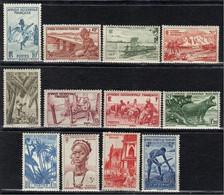 A.O.F. N° 24, 25, 26, 27, 28, 29, 30, 31, 32, 34, 35, 36 * - Unused Stamps