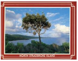 (U 1 A) Australia - QLD - North Stradbroke Island (PC1049) - Gold Coast