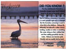 (U 1 A) Australia - ACT / NSW - Jervis Bay - Huskinson Pelican (K3) - Canberra (ACT)