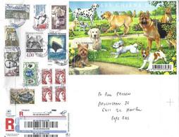 France 2020 Tours Dog German Shepherd Labrador, Yorkshire Terrier Film Fox Registered Cover - Dogs