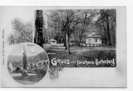 DC5016 - Ansichtskarte Forsthaus Guttenberg Markt Reichenberg - Altri