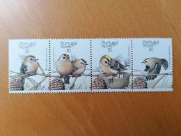 001 Oiseaux Birds Vögel - Azores