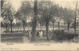 Nivelles   *  Paysage  (Moulin Clarisse)  (Nels, 76/24) - Nivelles