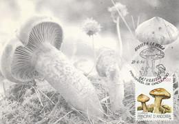 ANDORRE ESPAGNOL CARTE MAXIMUM 1990 CHAMPIGNON - Covers & Documents