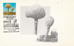ANDORRE ESPAGNOL CARTE MAXIMUM 1991 CHAMPIGNON - Covers & Documents