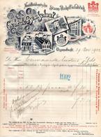Ossendrecht Woensdrecht Bergen Op Zoom  Factuur De Beukelaer Chicorei  24 Feb 1902 - 1900 – 1949