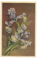Iris. Coloprint 57027 - Fiori