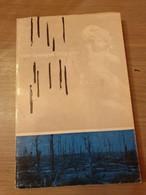 1914-1918 IJZER VEURNE Stille Getuigen 1914-1918. Kunst En Geestesleven In De Frontstreek. - Guerre 1914-18