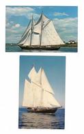 2 Different BLUENOSE II, Nova Scotia, Canada, Old Chrome Postcards - Segelboote