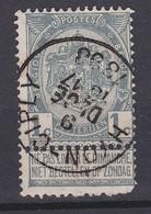 N° 53  HYON CIPLY - 1893-1907 Wappen