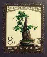 CHINE CHINA 1981 - Bonzai - 8 F Used - Mi. 1678 - Cf Scan - Gebraucht