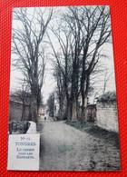 TONGEREN  -  TONGRES  - Weg Naar De Stadsmuren  - Le Chemin Vers Les Remparts - Tongeren