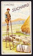 CHROMO Chocolat SUCHARD  Bergers Moutons  Shepherd  Sheep      Serie 206 - Suchard