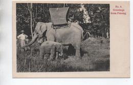 GREETINGS FROM PENANG (MALAYSIA / MALAISIE) - N° 8 - ELEPHANT - Malaysia