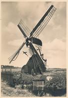 Nederland - 1946 - 5 Op 7,5 Cent Veth, Fotokaart Oegstgeest - Wipwatermolen, Briefkaart G285i - Ongebruikt - Ganzsachen