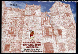 ESPAÑA SPAIN ESPAGNE (2020) - HB 58 Exposicion EXFILNA 2020 CACERES - EXFILNA VIRTUAL X COVID 19 - MINT - Blocs & Feuillets
