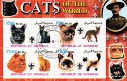 """Somalie 2002 - 3 Feuillets """"Chats""""avec Oblitération - Gatos Domésticos"""