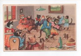"""Illustration  , Pas Signée  -  Chats   Humanisées   Dansent      """"  Le  Bal  Des  Familles  ."""" - Katten"""