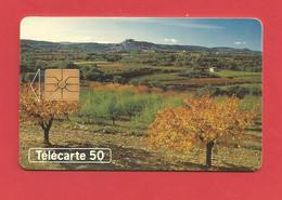TELECARTE 50  U TIRAGE 4000 000 EX.Au Fil Des Saisons Joli Paysage  ---- X 2 Scan - Seasons