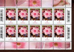 Bund Kleinbogen 3296 Blumen / Flowers Flammenblume  Neuf.  MNH  Postfrisch ** - Bloques