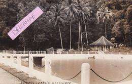 ASIE-  CARTE-PHOTO - PENANG-JARDIN BOTANIQUE -Ecrite  Le 17/12/32     (30-10-20) - Malaysia