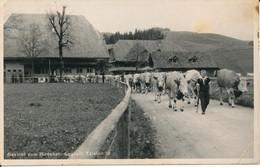 EGGIWIL - BE Bern