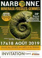 NARBONNE Paléontologie Minéraux Fossile Lytocéras Cornucopiae Toarcien (12) Minéralogie Géologie Mineral Fossil - Borse E Saloni Del Collezionismo