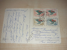 Postcard With Flower, Algeria, Alger Stamp, Stamps, 1963, Avion - Algeria (1962-...)