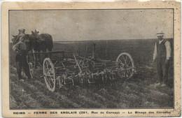 51 MARNE - REIMS  FERME DES ANGLAIS   CARTE PEU COURANTE - Sainte-Menehould