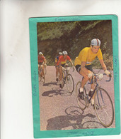 F GIMONDI - Radsport