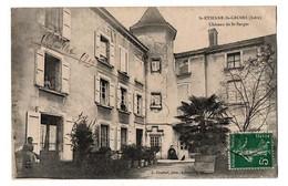 SAINT ETIENNE SAINT GEOIRS LE CHATEAU ANIMEE - Other Municipalities
