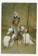 (RECTO / VERSO) SOUTH AFRICA - TRIBAL LIFE - ZULU WARRIOR - BEAU TIMBRE - PLI EN HAUT A DROITE - CPM VOYAGEE - South Africa