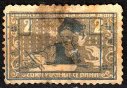SCHOOL Society Cyril Methodius Istria ISTRA 1910 Austria KuK Slovenia Croatia LABEL CINDERELLA VIGNETTE Boy Student Pen - Croazia