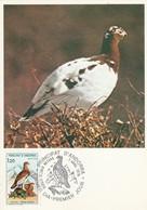 ANDORRE CARTE MAXIMUM 1979 PERDRIX BLANCHE - Maximum Cards
