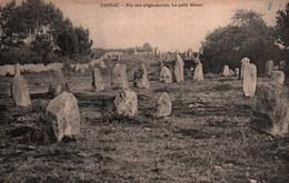 CPA - CARNAC - Fin Des ALIGNEMENTS - Le Petit Ménec - Edition Z.Le Rouzic - Carnac
