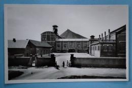 Carte Postale  -AUCHY-LES MINES -Fosse N° 8 Et Le Terril - Bergbau